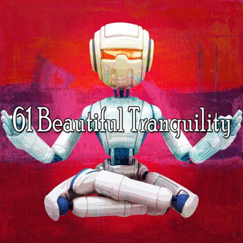 61 Beautiful Tranquility