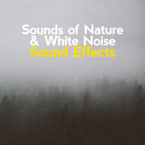 Sounds of Nature & White Noise Sound Effects
