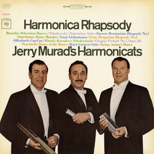 Harmonica Rhapsody