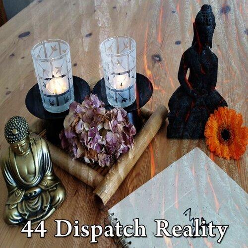 44 Dispatch Reality