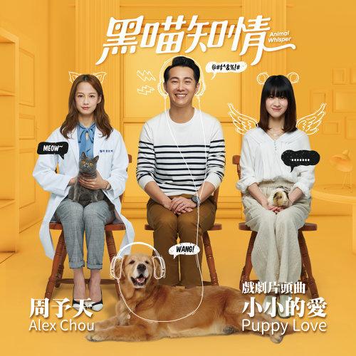 片頭曲:小小的愛 (Puppy Love)