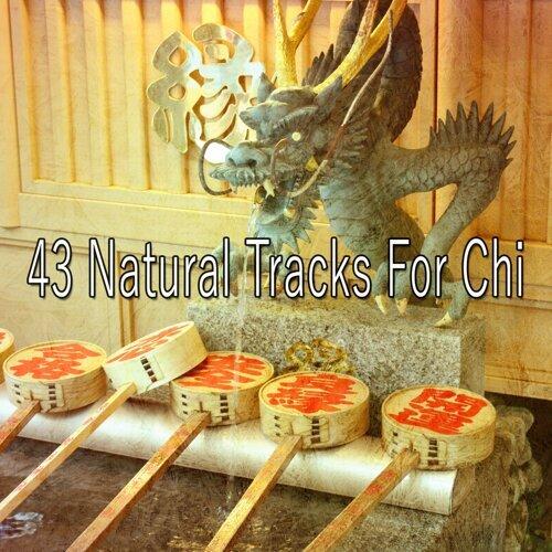 43 Natural Tracks for Chi