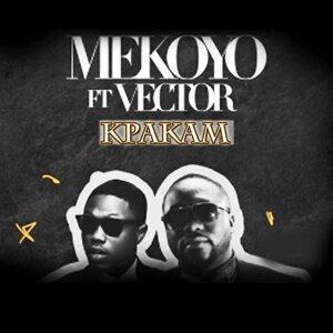 Kpakam (feat. Vector)