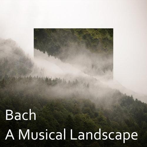Bach: A Musical Landscape