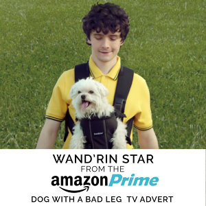 "Wand'rin' Star (From The ""Amazon Prime - Dog with a Bad Leg"" T.V. Advert)"