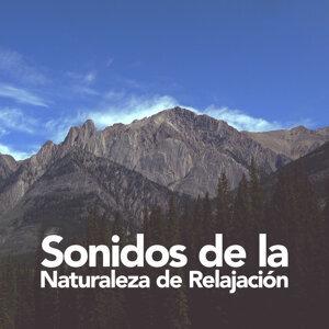 Sonidos de la Naturaleza de Relajación
