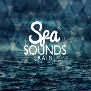 Spa Sounds: Rain
