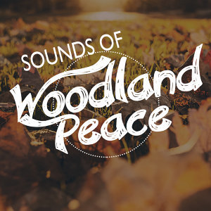 Sounds of Woodland Peace