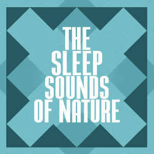 The Sleep Sounds of Nature