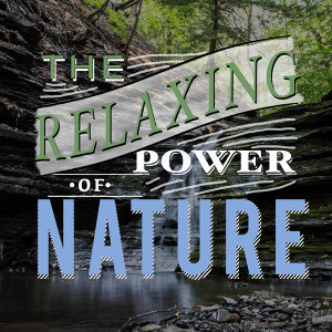 The Relaxing Power of Nature