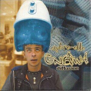 Ombre-elle - DJ Malik Groove Mix