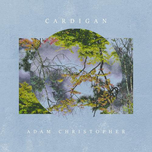 cardigan - Acoustic