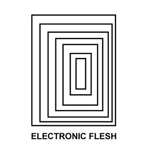 Electronic Flesh (feat. Remy Shand)
