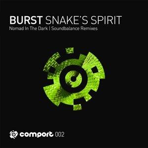 Snake's Spirit