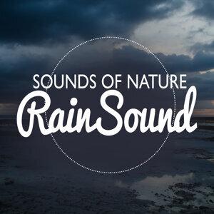 Sounds of Nature: Rain Sound