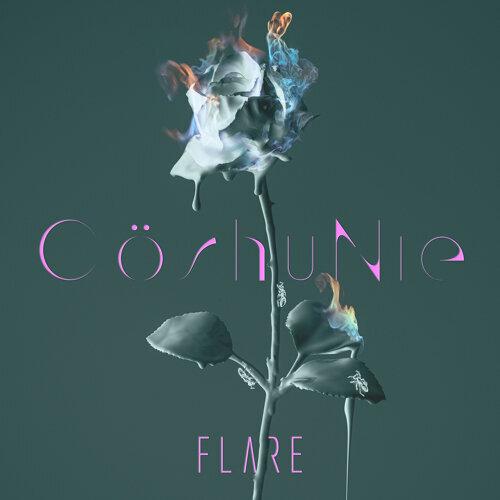 FLARE (English version)
