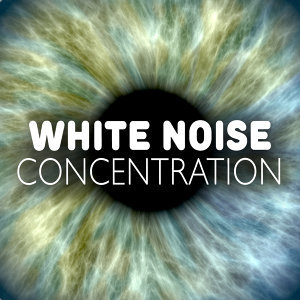White Noise Concentration