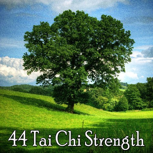 44 Tai Chi Strength