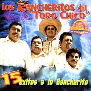 15 Éxitos a Lo Rancherito