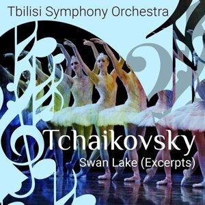 Tchaikosky: Swan Lake, Op. 20