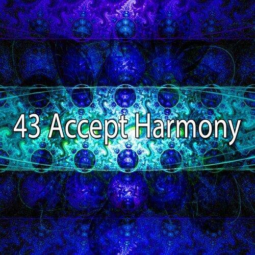 43 Accept Harmony