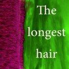 The Longest Hair - House Remix