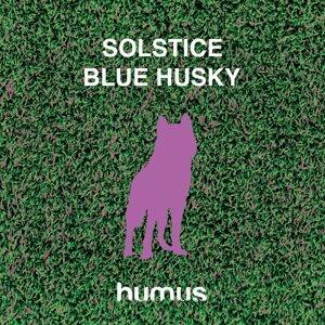 Blue Husky