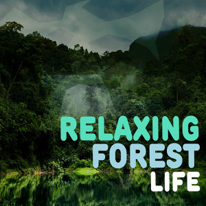 Relaxing Forest Life
