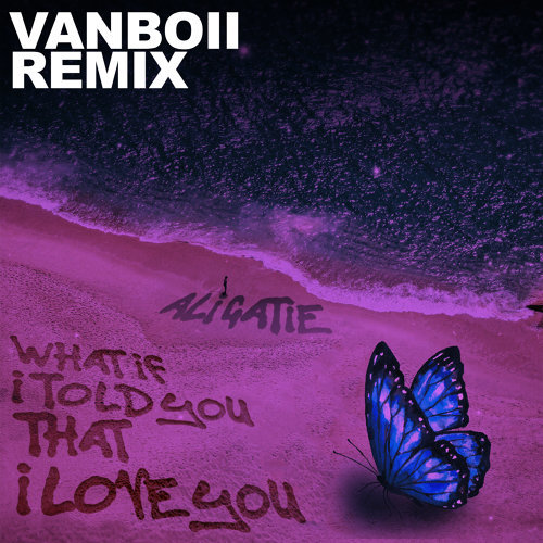 What If I Told You That I Love You - Vanboii Remix