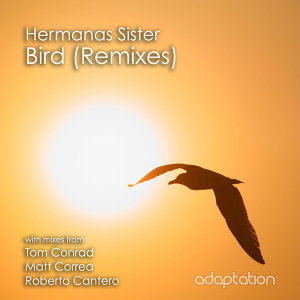 Bird (Remixes)