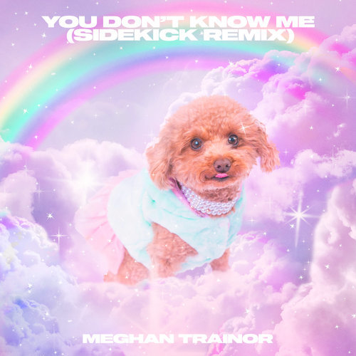 You Don't Know Me - Sidekick Remix
