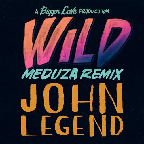 Wild - MEDUZA Remix