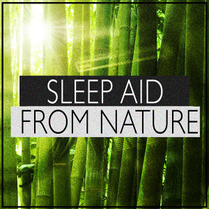 Sleep Aid from Nature
