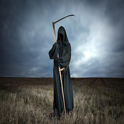 The Catnip Mafia - Grim Reaper 專輯- KKBOX