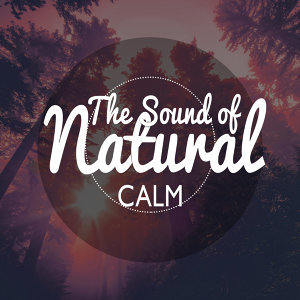 The Sound of Natural Calm
