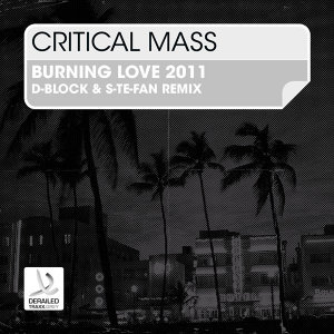 Burning Love - D-Block & S-te-Fan Remix