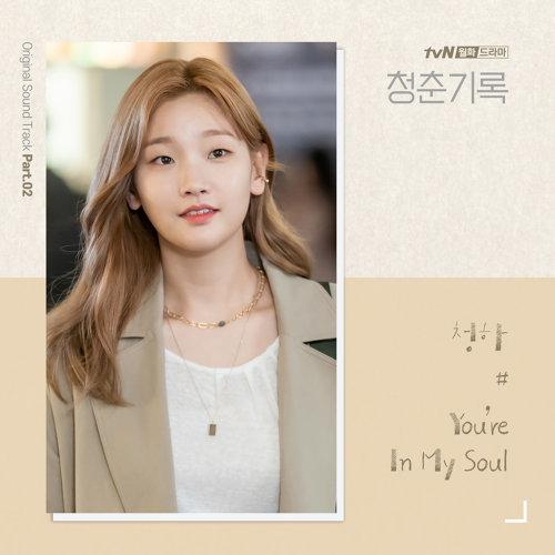 "You're In My Soul - ""青春紀錄""電視原聲帶Pt.2"