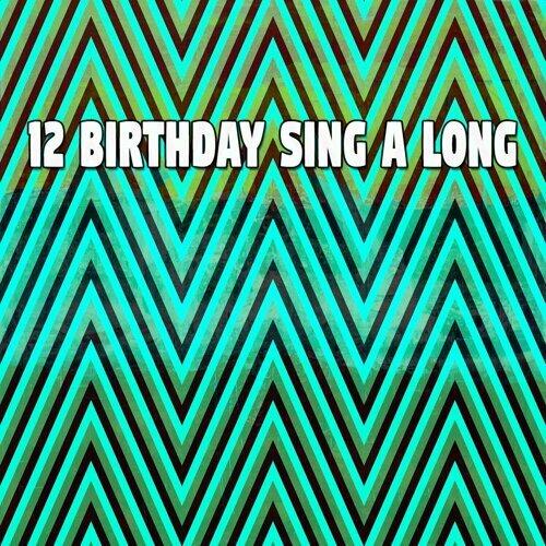 12 Birthday Sing a Long