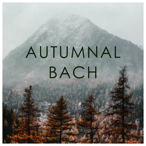Autumnal Bach