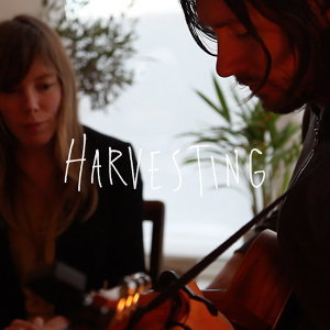 Harvesting (Acoustic)