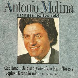 Antonio Molina, Grandes Exitos
