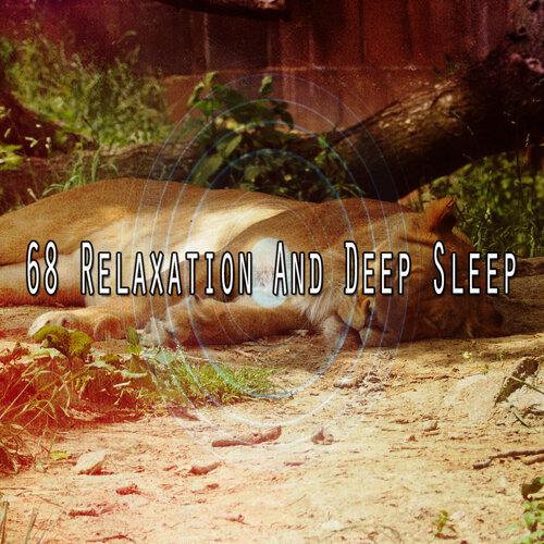 68 Relaxation And Deep Sleep