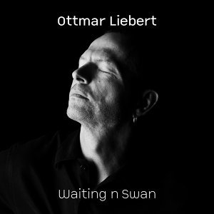 Waiting n Swan