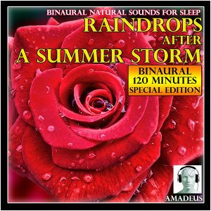 Binaural Natural Sounds for Sleep: Raindrops After a Summer Storm: 120 Minutes Special Edition