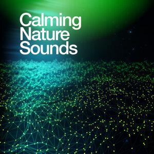Calming Nature Sounds