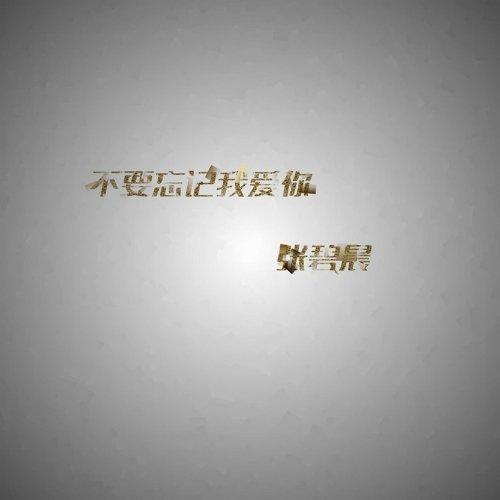 不要忘記我愛你 - 電視劇《神犬小七》片尾曲
