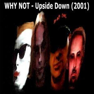 Upside Down (2001)
