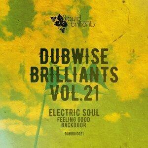 Dubwise Brilliants, Vol. 21