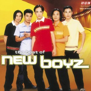 The Best of New Boyz