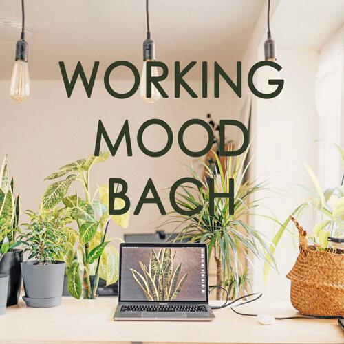 Working Mood - Bach